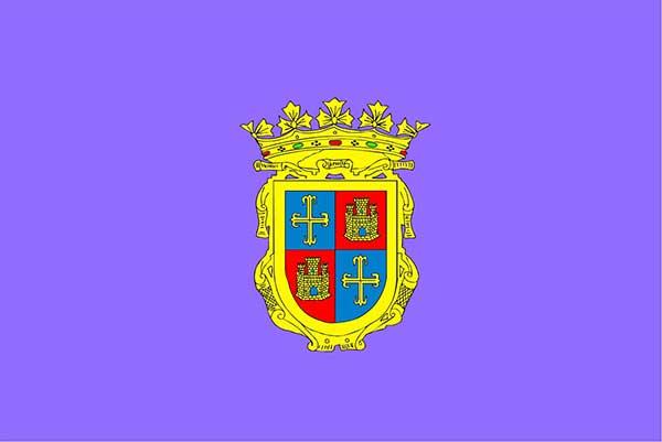 bandera Palencia