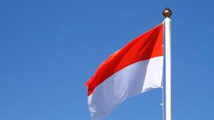 bandera-monaco